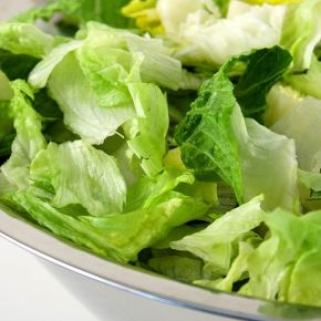Lettuce Is Not EasilyOffended